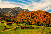 Declared Natural Park in 1996 and recognized as a UNESCO Biosphere Reserve in 2001, the park occupies the eastern Networks downtown area of the Principality of Asturias.  Its environmental wealth is manifested in a multitude of landscapes and contrasts. E
