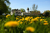 View towards Hotel Linde and Church Tower,  Fraueninsel, Lake Chiemsee, Bavaria, Germany