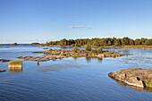 View from  Peninsula Kallandsö over the shores of Lake Vänern, Västergötland, Götaland, South Sweden, Sweden, Scandinavia, Northern Europe, Europe