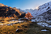 Early autumn morning in the Tyrolean Alps, Wildlahnertal, Austria