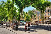 Cours Mirabeau, Aix-en Provence, Bouches-du-Rhone, Provence-Alpes-Cote d'Azur, France