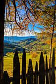 Odle in autumn, Dolomiti, alto adige, italy