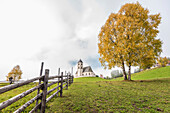 An autumn scenery with yellow coloured trees and the Saint Wolfgang church in the upcoming fog, Radein, South Tirol, Alto Adige, Italy