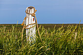 An old post with ropes on a pasture, Hallig Hooge, Schleswig Holstein, Germany