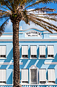 Blue house facade Victoria Block with a palm tree in the Front Street, historical Old Town, Hamilton, Island Bermudas, Great Britain