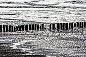 Grafische Ansicht der Brandung am Strand mit Holzpoller im Sonnenschein, Juist, Schleswig Holstein, Deutschland