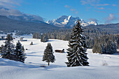 View from the Buckelwiesen near Kruen to Zugspitz range with Alpspitze, Zugspitze and Waxenstein, Bavaria, Germany
