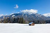 Haystack at the Buckelwiesen, near Kruen, view to Soiern range, Bavaria, Germany