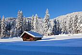 Haystack in winter landscape, near Kruen, view to Karwendel range, Bavaria, Germany