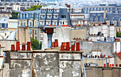Parisian rooftops and chimneys. Latin Quartier. Paris. France.