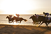Shortly before sunset at the famous horse races of Sanlúcar de Barrameda which take place every year during August along a 1.800m stretch of beach at the mouth of the River Guadalquivir. This tradition dates back to 1845. Cádiz province, Andalusia, Spain.