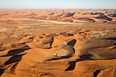 Sand dunes in the Namib Desert. Top right the Witberg (White Mountain, 426m), a granite massif in the centre of the Namib Desert. The trees are Camelthorn trees (Acacia erioloba). In the evening. Aerial view. Namib-Naukluft National Park, Namibia.