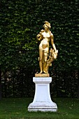 Golden statue of the hunting goddess Diana in front of a trimmed deciduous tree hedge in the Schwetzingen palace garden in late summer, Schwetzingen, Germany.
