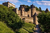 Medieval fortified town, Carcassonne, Aude, Languedoc-Roussillon, France, Europe