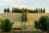 Europe, Italy, Tuscany, Val d´Orcia, September 2013, UNESCO World Heritage - cultural site.