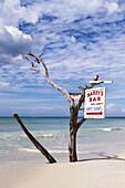Driftwood sign for beach bar, Negril, Jamaica.