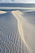 white sand dunes of Walker Bay Nature Reserve, Gansbaai, Western Cape, South Africa