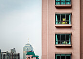 view into appartment where huge Teddy bear is seated at window, Mid-Levels, Hongkong, China, Asia