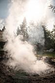 dichter Rauch entweicht aus Meiler, Holzkohle Herstellung Köhlerei, Aalen, Härtsfeld, Ostalbkreis, Baden-Württemberg, Deutschland