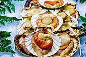 Pilgrim´s scallop with seafood. Santiago de Compostela. La Coruña, Galicia, España.