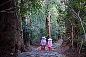Pilgrims in Heian period costumes, in Daimon-zaka Slope, access at Kumano Nachi Taisha Grand Shire, Kumano Kodo,Nakahechi route, Wakayama, Kinki, Japan.