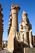 Statue of Seated Ramses II, Court of Ramses II, Luxor Temple, Luxor, Egypt