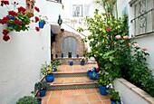 El Cobijo de Vejer, small, hotel and guesthouse in the old town of Vejer de la Frontera, Pueblos blancos, Andalusia, Spain. El Cobijo has a gorgeous courtyard garden which is often painted.