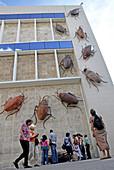 'Roberto Fabelo`s work of art ''Survivor'' in Havana`s Fine Arts Museum. Havana`s Biennal 2009. Cockroaches on Havana`s Fine Arts Museum.'