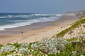 Jogging along the beach at the Indian Ocean in iSimangaliso-Wetland Park, South Africa, Africa