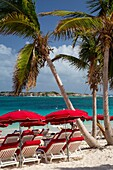Umbrellas along Orient Beach, Saint Martin, West Indies.
