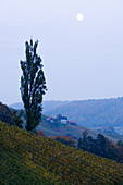 Full moon over Sulztal, a side valley of a touristic route in the south styrian wine region