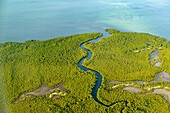 Aerial views of costline and mangrove to the noth of Pemba. Mozambique.