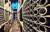 '''''The cathedral'''' room at the Marqués de Riscal winery. The city of wine. Elciego. Rioja alavesa wine route. Alava. Basque country. Spain.'''
