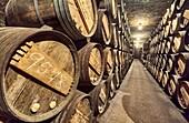 R. Lopez de Heredia Viña Tondonia wine cellar. Haro. La Rioja. Spain.