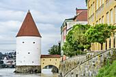 Tower Schaiblingturm while flood, Passau, Danube Bike Trail, Lower Bavaria, Bavaria, Germany