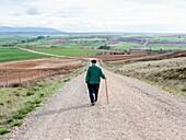 An old man walks down a path of Sotillo, Sepulveda, Segovia, Spain.