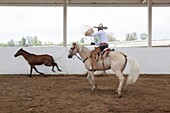 'The charreada or charrería is a competitive event similar to rodeo and was developed from animal husbandry practices used on the haciendas of old Mexico. The sport has been described as ''living history,'' or as an art form drawn from the demands of work