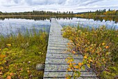 Lake with landing stage in autumn landscape in Gällivare, Sweden.