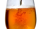 Beer being poured into a large glass.
