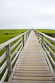 Bridge and boardwalk with grass around that lead to the beach.  Destroyed in 1991 by Hurricane Bob, the 1, 350-foot 411-meter boardwalk in Sandwich—the oldest town on Cape Cod—was rebuilt with support from locals, whose names and messages are inscribed o