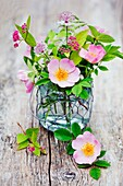 Roses and Astrantia in glass vase.