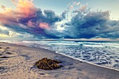 Seascape and storm clouds over the ocean. Ponto Beach, Carlsbad, California, United States.