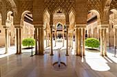 yard of lions. alhambra of granada.