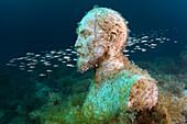 'Underwater museum ''Reddening leaders'', Felix Edmundovich Dzerzhinsky sculpture. Cape Tarhankut, Tarhan Qut, Black sea, Crimea, Ukraine, Eastern Europe.'