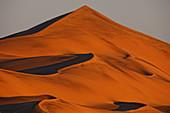 Intricate dune pattern lit up by morning sun Sossusvlei in the Namib desert Namib-Naukluft NP, Namibia
