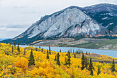 Scenic autumn view of Tagish Lake near the South Klondike Highway, Yukon Territory, Canada