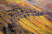 'The steep sided cliffs of Icelands Westfjords are very colourful in any season; Iceland'