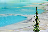'Glacial silt at the delta on Lake Louise formed by the turquoise glacial meltwater, Banff National Park; Alberta, Canada'