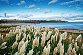 'Littlehaven Bay and Herd Groyne Lighthouse; South Shields, Tyne and Wear, England'