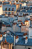 'Rooftops of residential buildings; Paris, France'